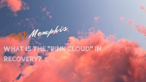 pink cloud in recovery